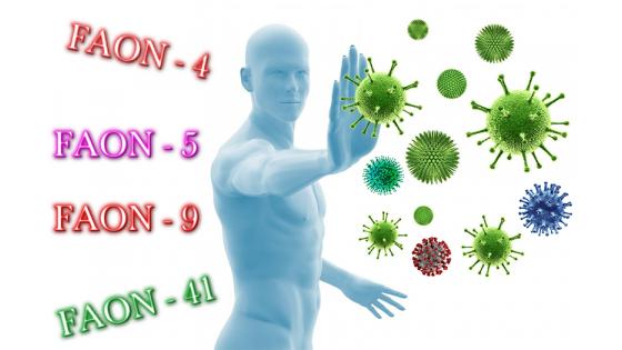FAON и пандемией коронавируса.